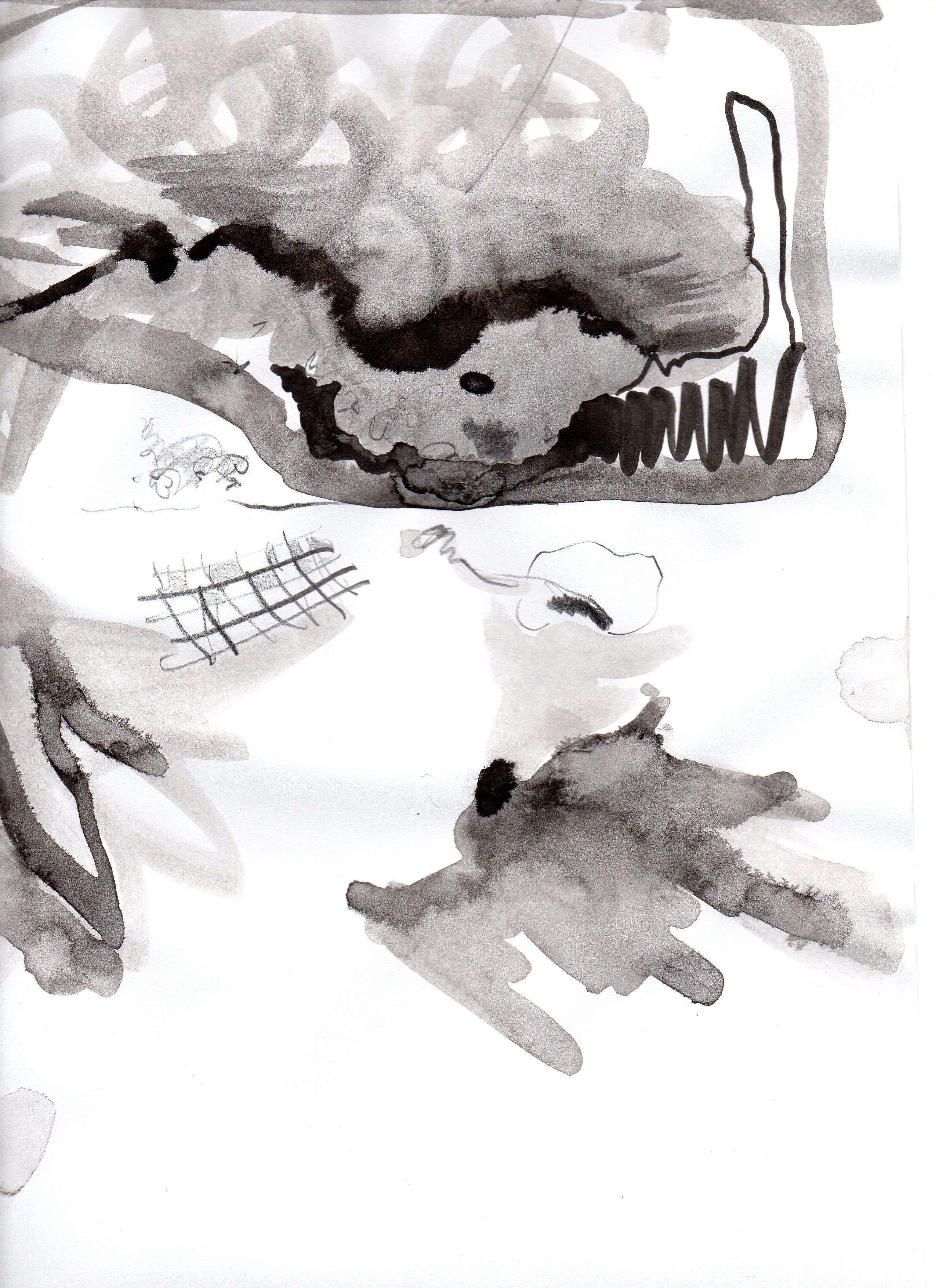Vliegen - potlood en inkt op papier - Suzanne Bodde 2016